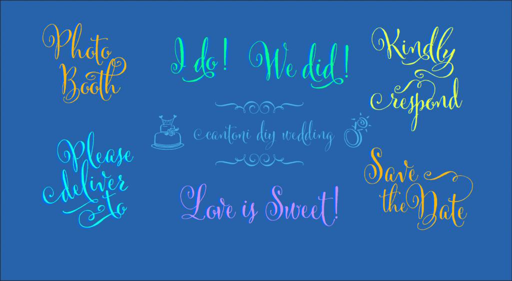DIY-Wedding-Words,Cantoni-Pro,Cantoni Script font, calligraphy font,script font, fancy font, hand lettered font, hand written font, fancy alphabet, fonts for invitations, best selling fonts, most popular fonts, unique fonts, fonts for weddings, wedding fonts, fonts for invitations, diy wedding fonts, diy wedding, flourishes, ornaments, wedding flourishes, wedding ornaments, wedding,