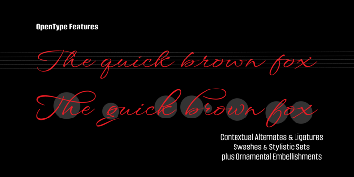 Hand Lettered font, font, fonts, fancy alphabet, hand lettering, most popular fonts, best selling fonts, graphic design, calligraphy, lettering, discount on fonts, Rob Leuschke, MyFonts, Windsong Font