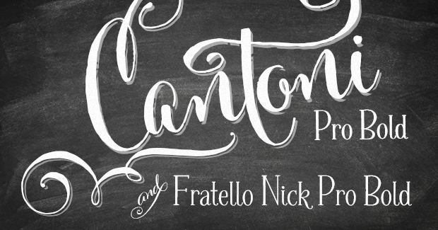 WEBSITE SPECIAL! Cantoni Pro Bold & Fratello Nick Pro Bold Bundle Preview
